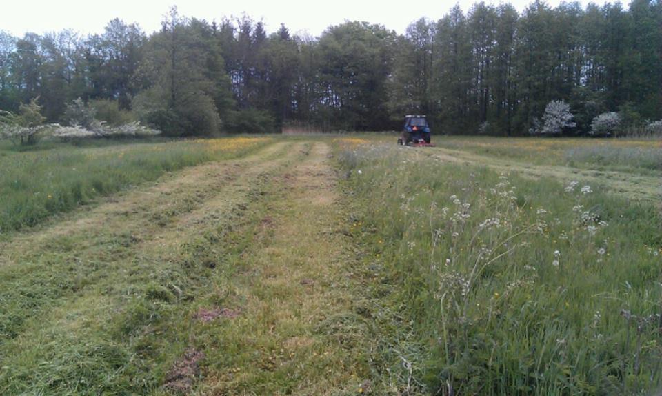 Ved hjælp af en såkaldt brakpudser slås græs på engen