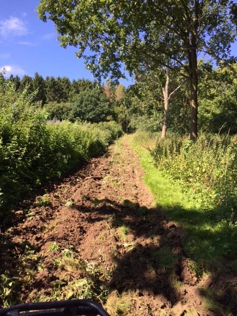 Et eksempel på en barjordsstribe. Barjordsstriben er etableret imellem et levende hegn og en skovkant. Fasanerne kan derved hurtigt komme i skjul for bl.a. rovfugle.